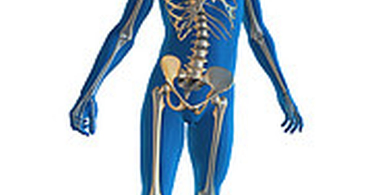 How to Reverse Osteopenia | eHow UK
