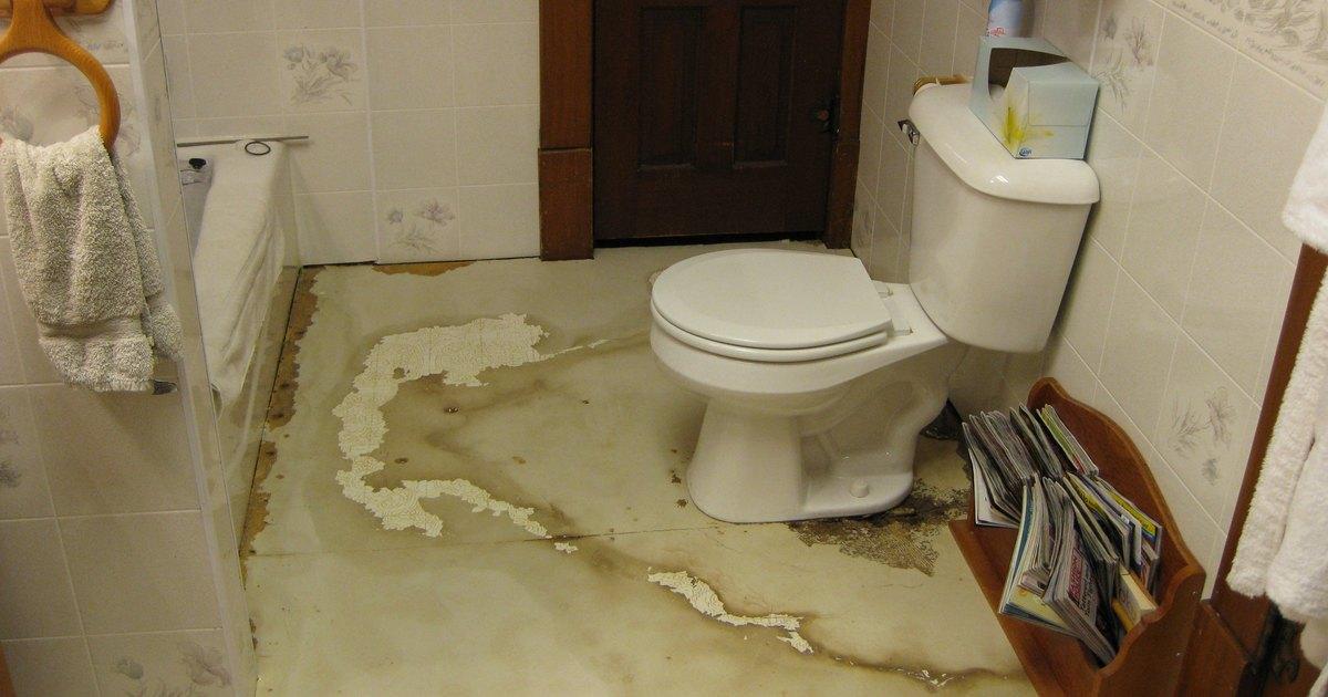 Replace bathroom floor