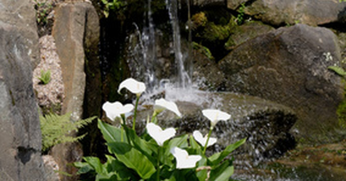 how to build an above ground pond