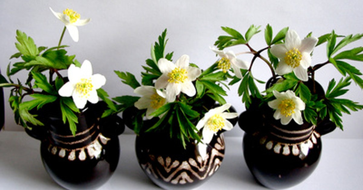 Ideas On What To Put In Flower Vases Ehow Uk