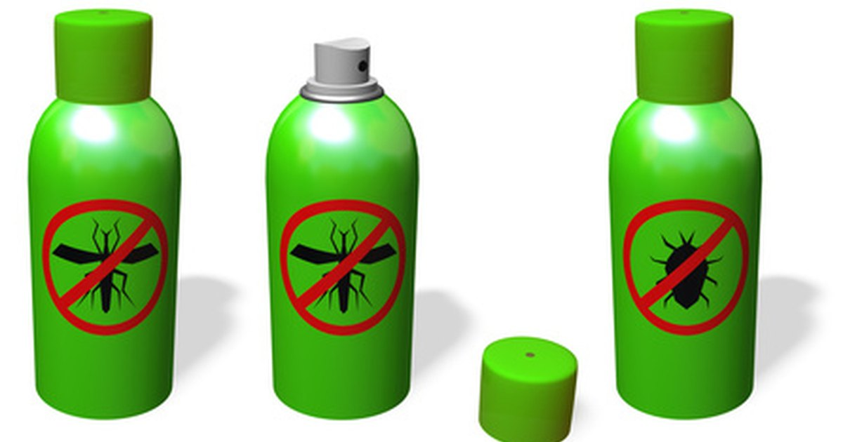 how to get rid of silverfish in my closet ehow uk