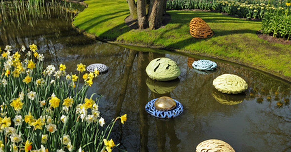 How to keep garden ponds clear ehow uk for Keeping ponds clean without filter
