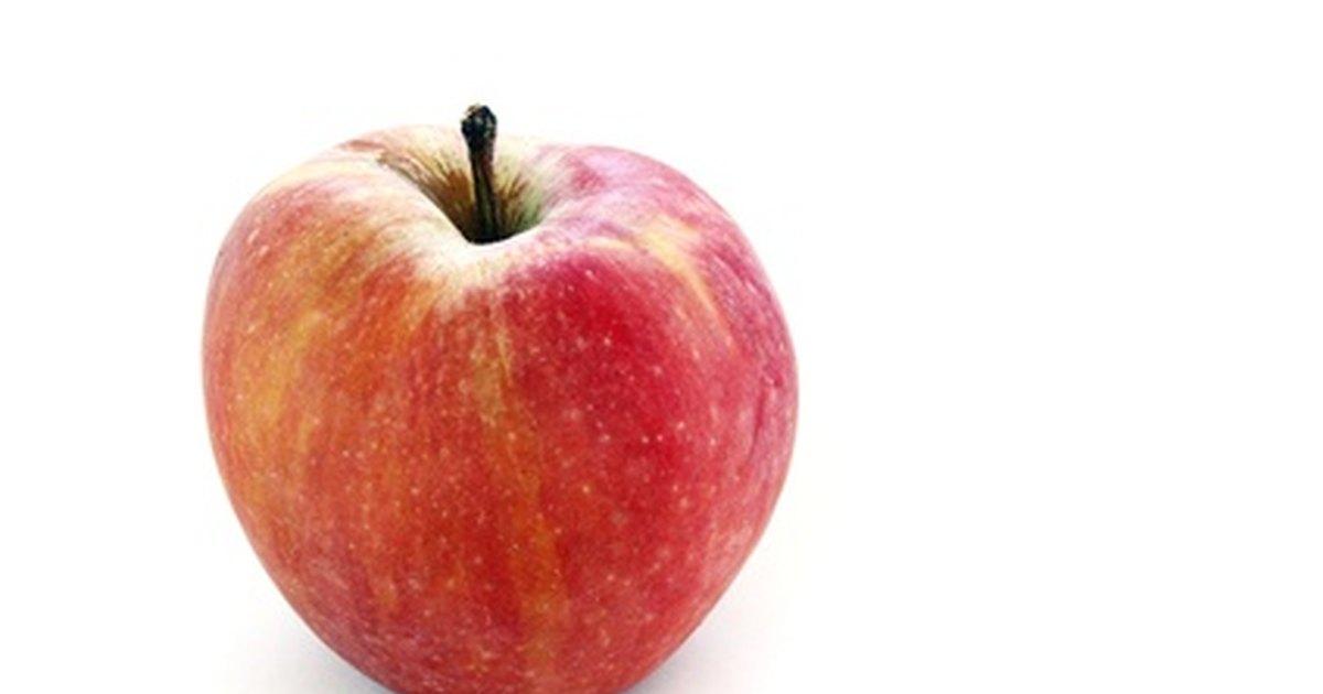 Lista de alimentos ricos en fibra y sin gluten ehow en espa ol - Alimentos ricos en gluten ...
