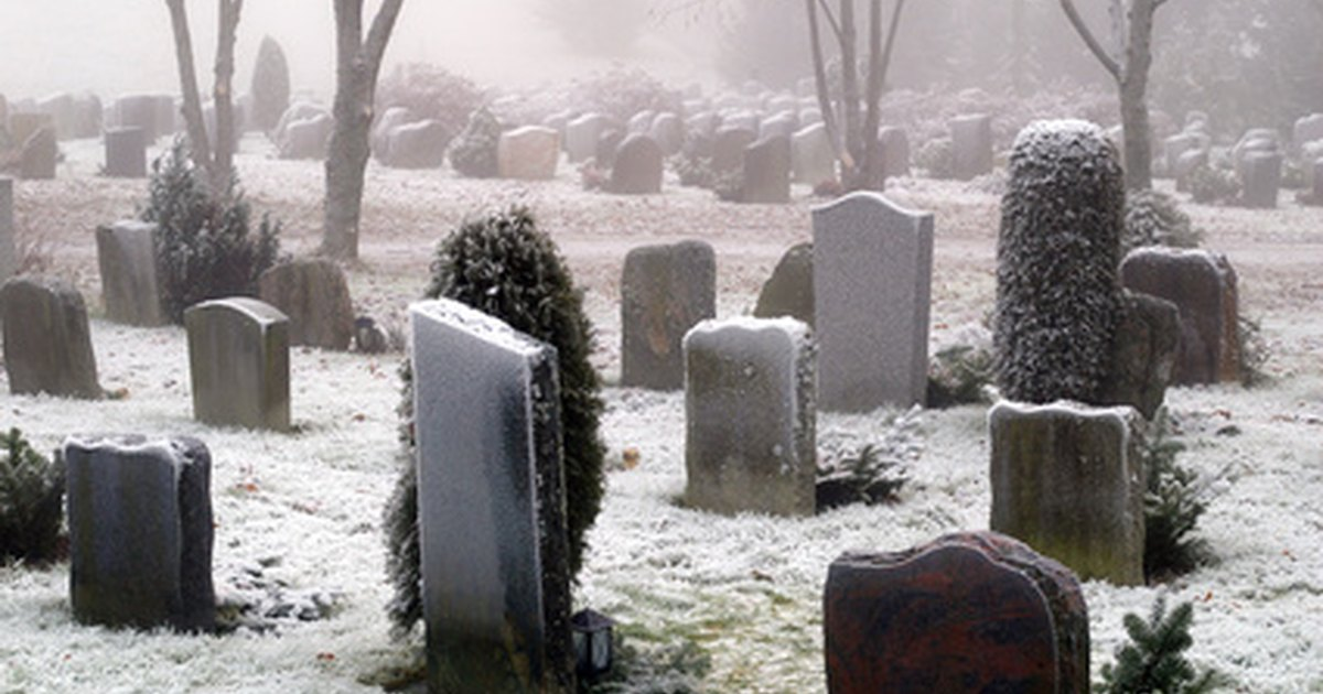 Can You Put Two Urns Of Ashes In One Plot Ehow Uk