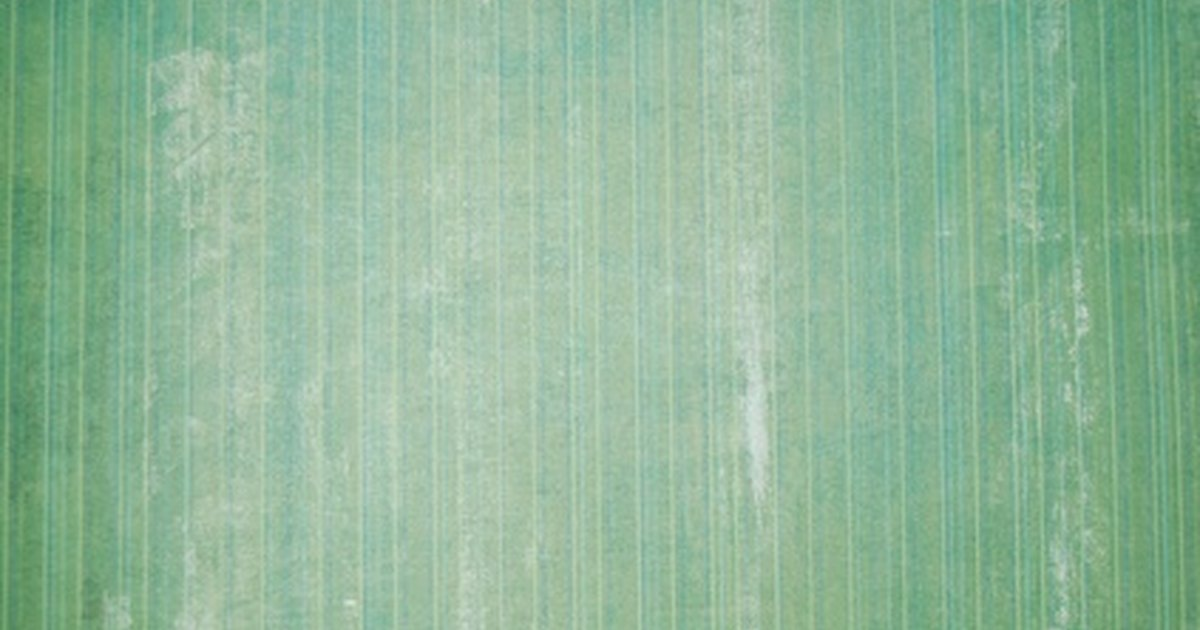 tips for painting over wallpaper seams ehow uk