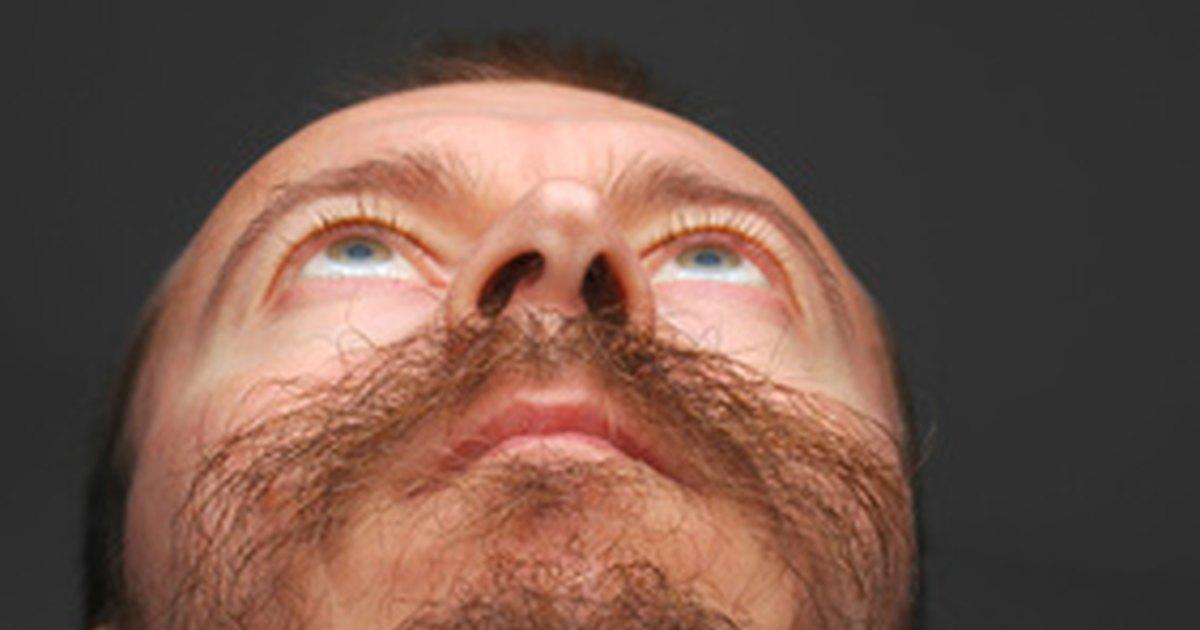 Fake facial hair application