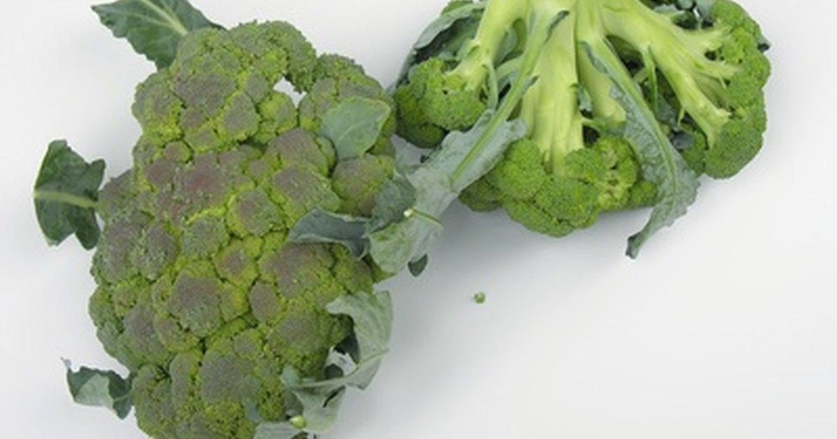 How to freeze raw broccoli & cauliflower   eHow UK