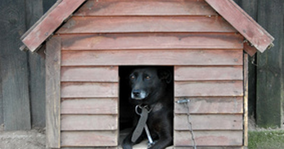 how to build a kennel