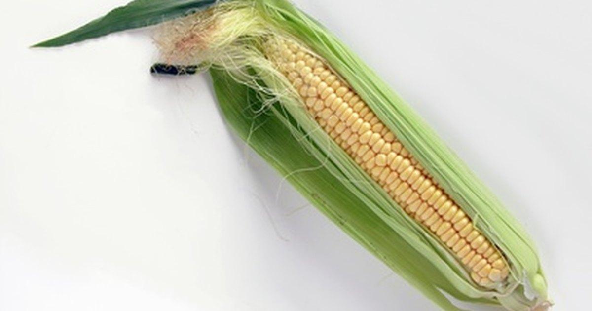 C mo cocinar la mazorca de ma z al vapor ehow en espa ol for Como cocinar mazorcas de maiz