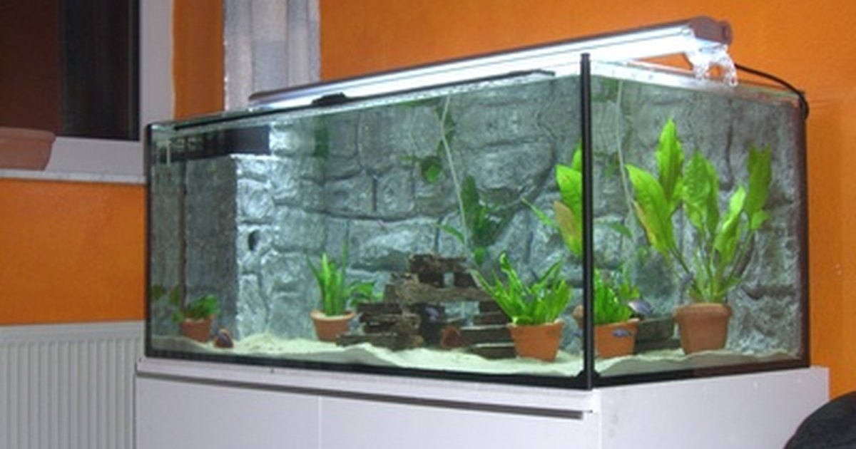 How to clean fish tank gravel without a vacuum ehow uk for How to clean fish tank rocks