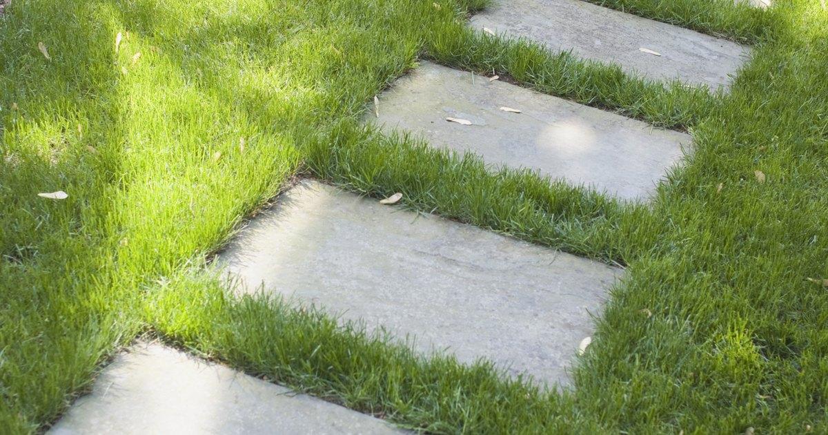 C mo dise ar y crear un camino o calzada a base de - Bloques para cesped ...