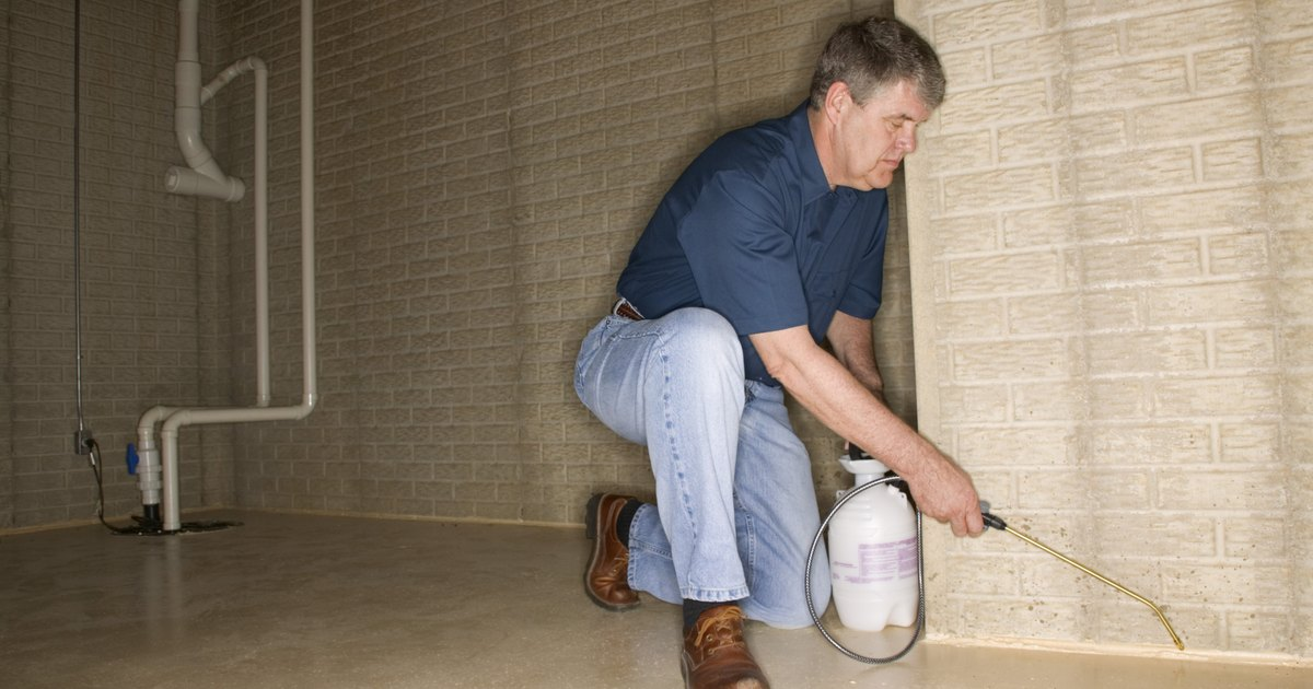 How to clean mold off basement concrete walls ehow uk for Cleaning concrete walls