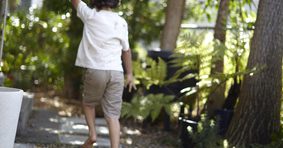 Ideas para la decoraci n un patio sin c sped ehow en espa ol for Decoracion jardin sin cesped