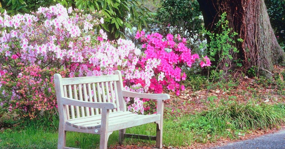 C mo preparar la tierra para un jard n de flores ehow en for Para desarrollar un jardin contemporaneo