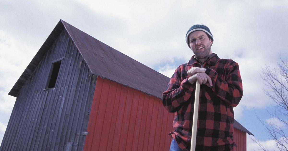 Farmer costume ideas