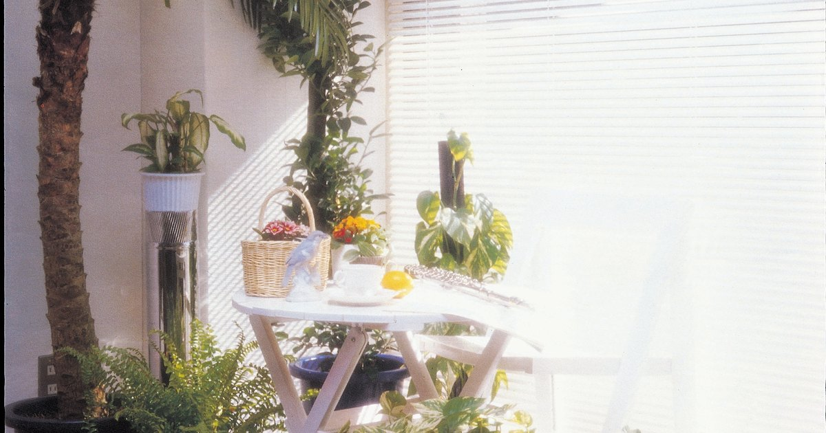 How To Revive Dying House Plants Ehow Uk