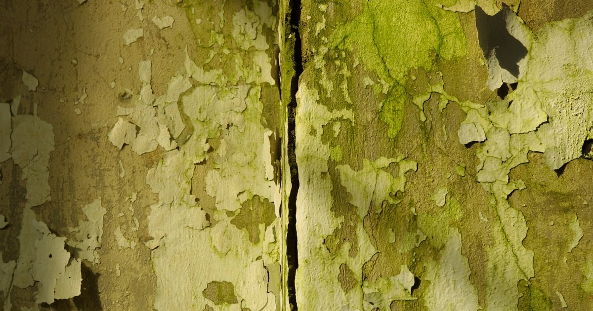 How To Repair And Paint Cracks On Interior Walls Ehow Uk
