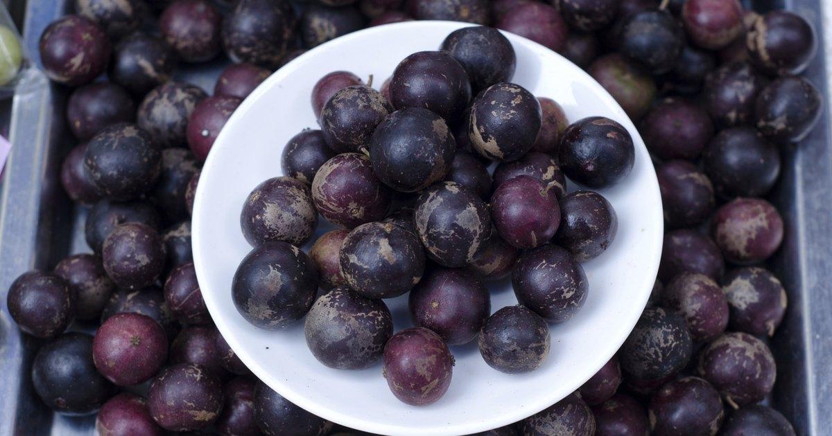 Laxantes naturales caseros ehow en espa ol - Frutas diureticas y laxantes ...
