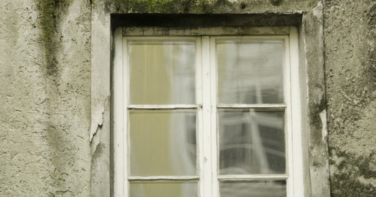 How To Clean Moss Off Window Glass Ehow Uk