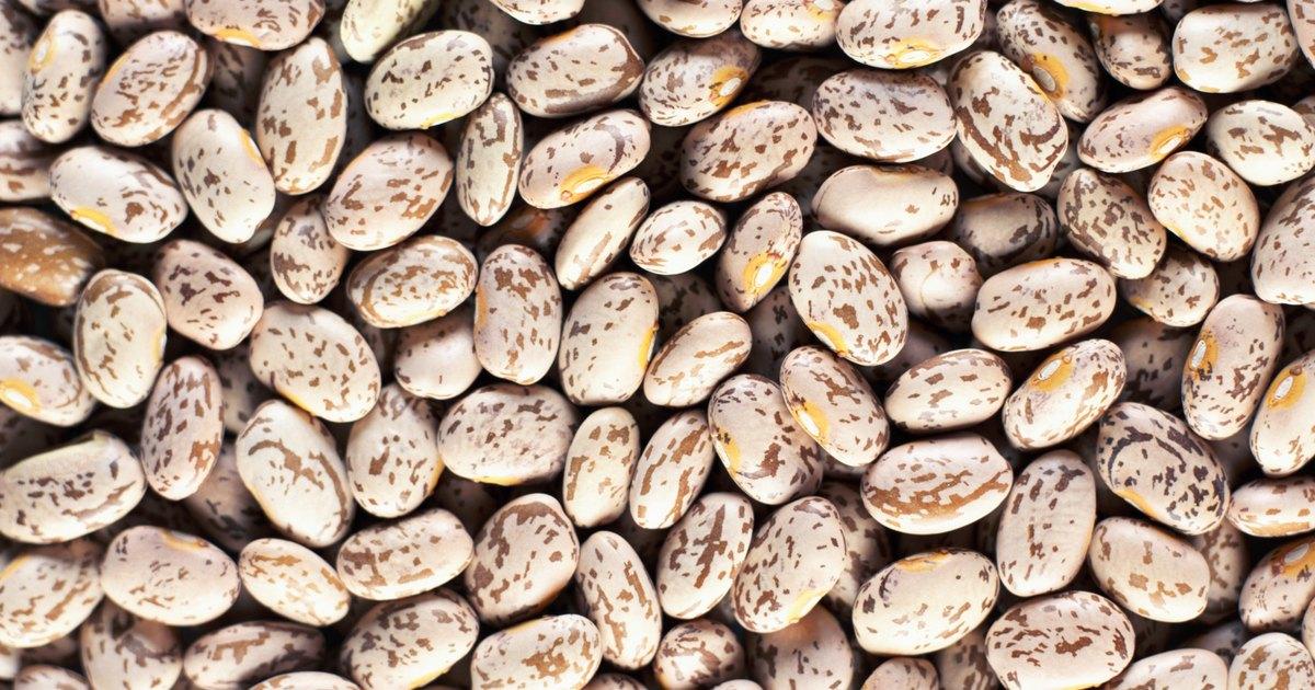 how to cook garden fresh pinto beans