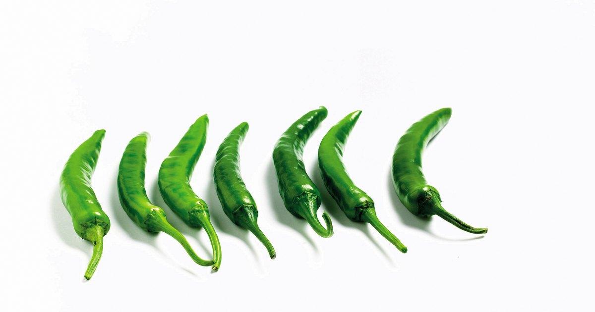 Qu hacer con muchos pimientos verdes largos y delgados - Como hacer pimientos verdes fritos ...