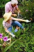 Lona preta para evitar ervas daninhas