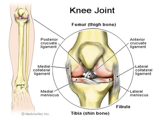 Knee Joint Dislocation