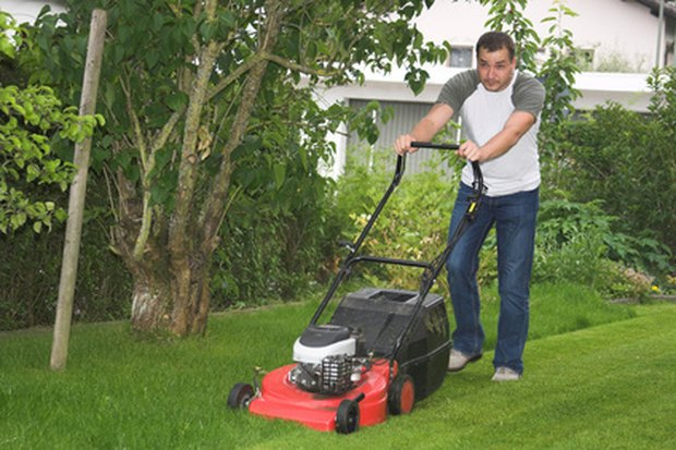The best lawn mower to buy