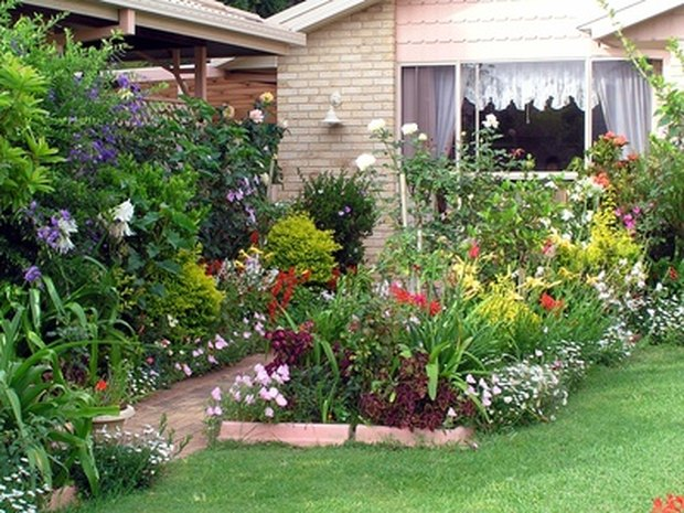 planes para un jardn pequeo en el patio trasero