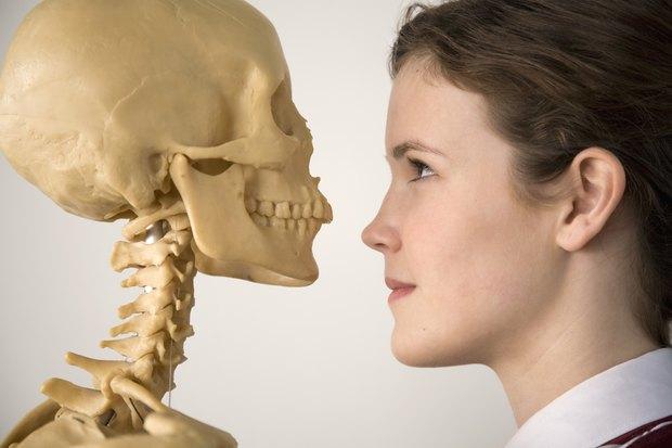 Skeletal System Games for Kids   eHow UK