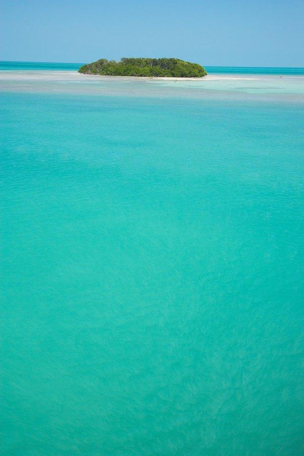 Cmo hacer una isla tropical para un proyecto escolar  eHow en
